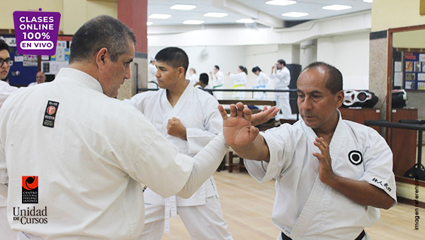Karate Shorin Ryu (15 Años A Más - Todos Los Grados)